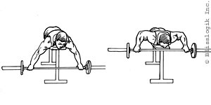 Back Barbell Exercises