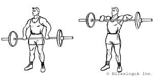 Shoulders Barbell Exercises