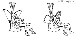 Bowflex Chest Exercises