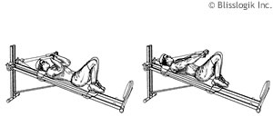 Total Gym Tricep Exercises