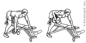 back-dumbbell-exercise.jpg